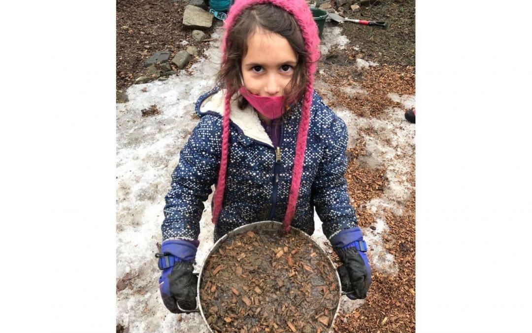 Weekly Photo: Dandelion Kindergarten