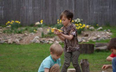 Weekly Photo: Sunflower Kindergarten