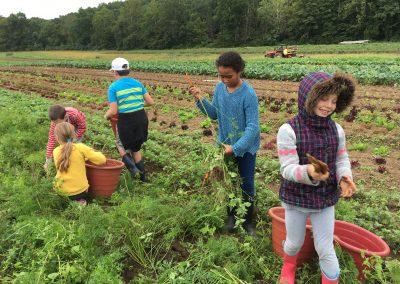 3rd Grade Fall 2018 Riverbank Farm 1
