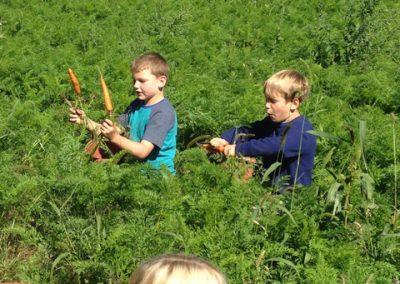 HVWS 3rd Grade at Riverbank Farm