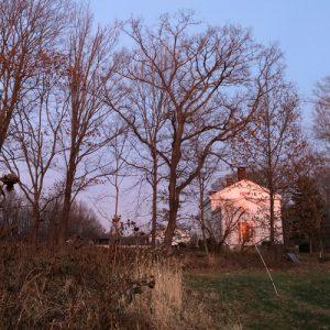 Warrup's Farm