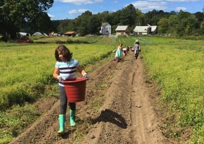 Students on the farm.